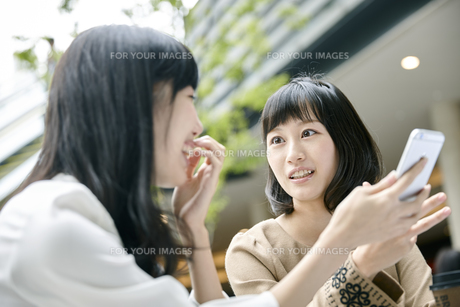 カフェでおしゃべりをする女性2人の素材 [FYI00495657]