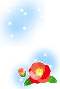椿と雪の素材 [FYI00495807]