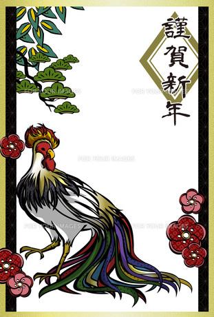 酉年かっこいい鶏の年賀状テンプレートの写真素材 [FYI00495827]