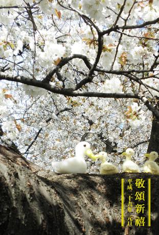 2017年賀状/酉/クラフト/かわいい/アヒル/親子/山桜/敬頌新禧の写真素材 [FYI00495993]