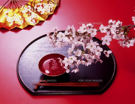 盃と桜の写真素材 [FYI00496141]