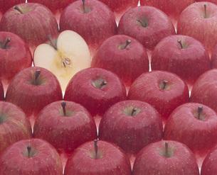 リンゴ(フジ)の写真素材 [FYI00496205]