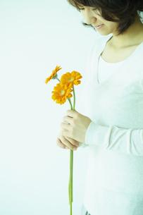 ガーベラを持つ女性 宮城県仙台市の写真素材 [FYI00496345]