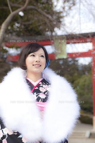 鳥居と着物姿の女性 宮城県塩釜市の写真素材 [FYI00496428]