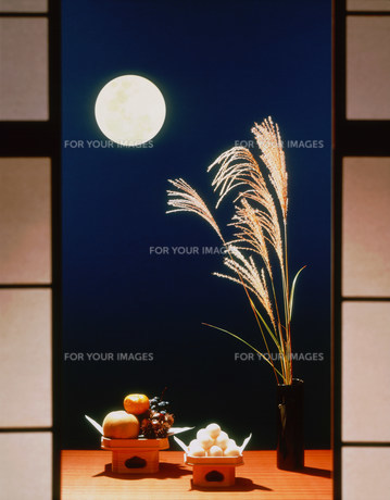 障子から見る月とススキと月見団子の写真素材 [FYI00496521]