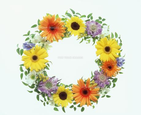 花のリースの素材 [FYI00496571]