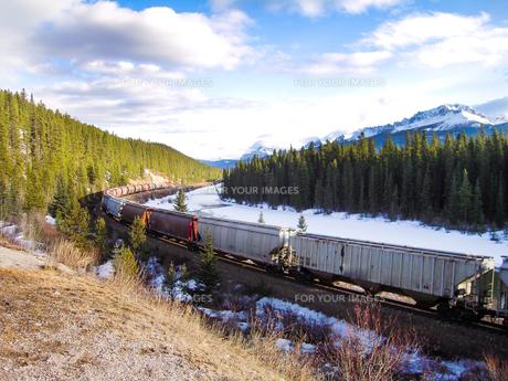 冬のカナディアン・ロッキー ボウ川沿いを走る貨物列車の写真素材 [FYI00497121]