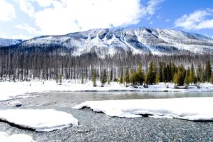 冬のカナディアン・ロッキー クートニー国立公園の川と山並みの写真素材 [FYI00497139]