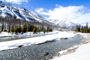 冬のカナディアン・ロッキー クートニー国立公園の川と山並みの写真素材 [FYI00497140]