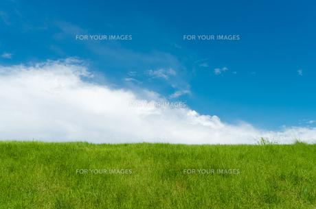 草原と雲と空の素材 [FYI00497196]