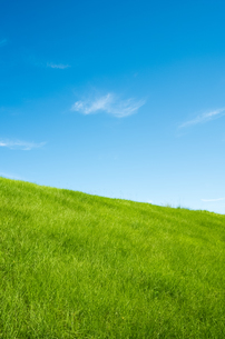 青空と草原の写真素材 [FYI00497198]