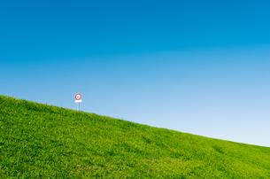 青空と野原の写真素材 [FYI00497201]