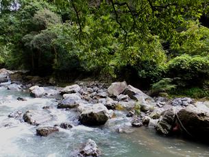 摂津峡の水の流れの写真素材 [FYI00497210]