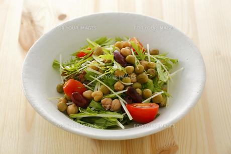 水菜とミックスビーンズのサラダの素材 [FYI00497275]