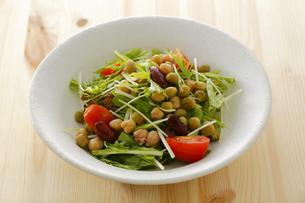 水菜とミックスビーンズのサラダの写真素材 [FYI00497275]