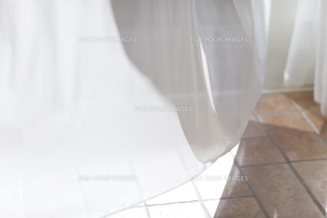 カーテンの写真素材 [FYI00497318]