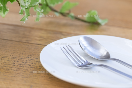 皿とスプーンとフォークの写真素材 [FYI00497321]