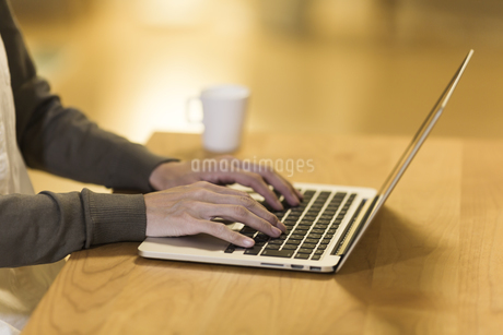 パソコンをする女性の写真素材 [FYI00497419]