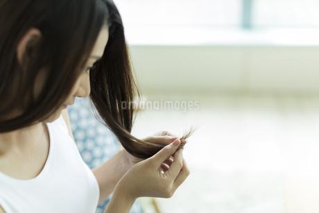 髪を触る若い女性の写真素材 [FYI00497464]
