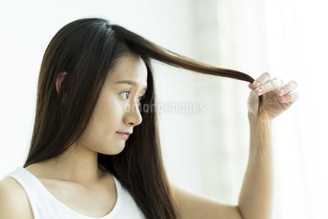髪を触る若い女性の写真素材 [FYI00497469]