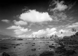 グアム島の朝の海岸の様子の写真素材 [FYI00497479]