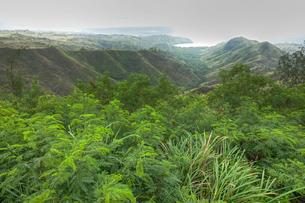 セッティ湾展望台から見た渓谷と入り江と海の写真素材 [FYI00497483]