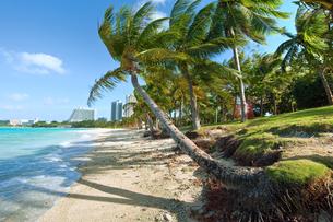 グアム島 タモン湾のビーチの写真素材 [FYI00497493]