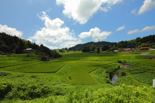 日本の田舎の夏の日を丘から望むの写真素材 [FYI00497511]