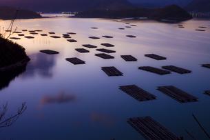 夕暮れの瀬戸内海に浮かぶ筏の写真素材 [FYI00497519]