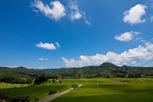 島根県石見銀山近辺の畑の様子の素材 [FYI00497545]