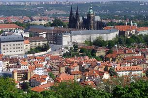 チェコ共和国プラハの街を見下ろす プラハ城の写真素材 [FYI00497582]