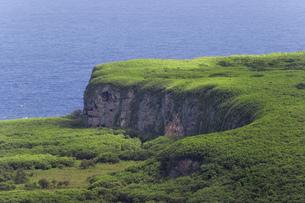 マリアナ諸島 サイパン島のジャングルを見下ろすの素材 [FYI00497607]
