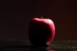 りんごのシルエットの写真素材 [FYI00497684]