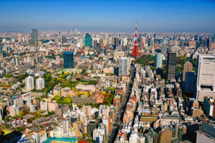 東京の街の空撮 東京タワー上空の写真素材 [FYI00497700]