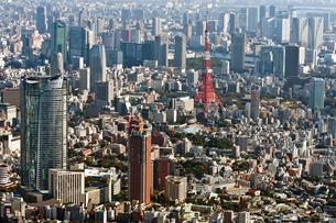 東京の街の空撮 東京タワー上空の写真素材 [FYI00497704]