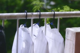 白いシャツの洗濯物を干した写真の写真素材 [FYI00497711]