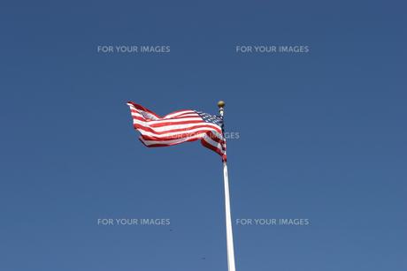 アメリカ星条旗の写真素材 [FYI00497734]