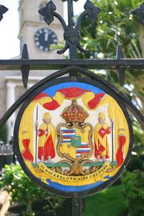 ハワイ王朝のカラフルな紋章の素材 [FYI00498034]