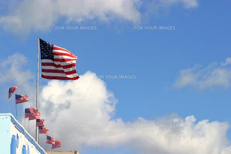 風になびく大きなアメリカ星条旗と複数の星条旗 の写真素材 [FYI00498046]