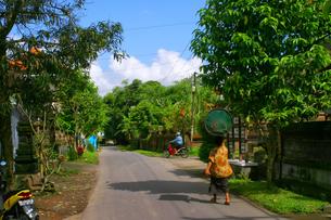 インドネシア/バリ島 頭にドラム缶を載せた女性が歩く村の写真素材 [FYI00498050]