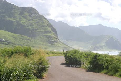 ハワイオアフ島、ヨコハマベイの様子の素材 [FYI00498053]