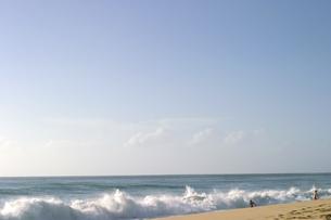 ハワイオアフ島、ヨコハマベイの様子の写真素材 [FYI00498099]