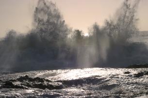ハワイオアフ島、ヨコハマベイの様子の写真素材 [FYI00498100]