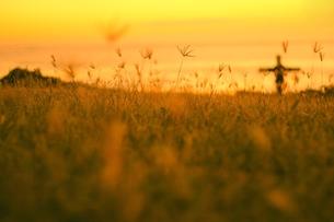 ハワイオアフ島、マカハ地区の夕焼けの様子と十字架の写真素材 [FYI00498101]