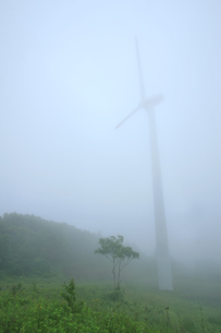 風力発電機の素材 [FYI00498120]