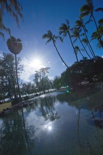 ハワイワイキキ カピオラニ公園の写真素材 [FYI00498310]