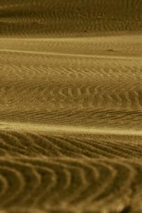 砂漠の模様の写真素材 [FYI00498341]