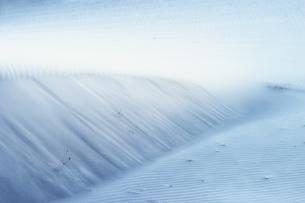 砂漠の模様の写真素材 [FYI00498343]