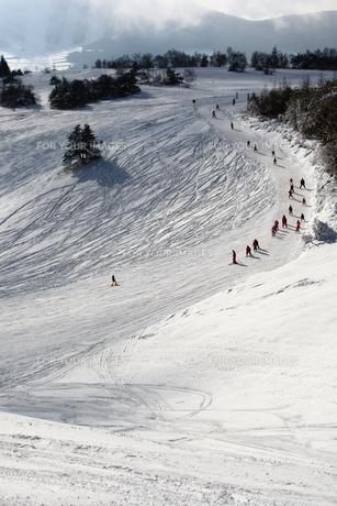 スキー場 ゲレンデの写真素材 [FYI00498415]