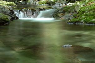 初夏 森の中の清流の写真素材 [FYI00498457]